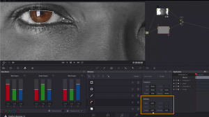 DaVinci Resolve Eye Tracking